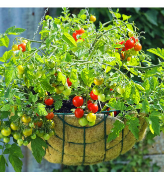 """MTB Garden Hanging Baskets for Plants 14"""" - Vintage Geo with Coco-Liner, Pack of 4, Hanging Planter Plant Hanger Hanging Flower Basket Chain Basket and Plant Growers for Home Balcony Patio Decoration"""